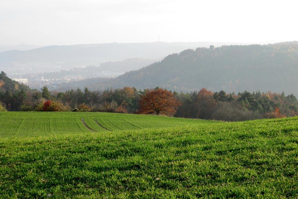 Jena Battlefield